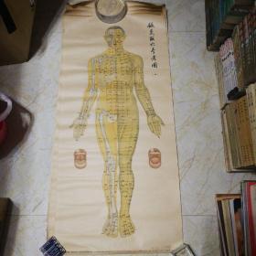 针灸取穴参考图1958版