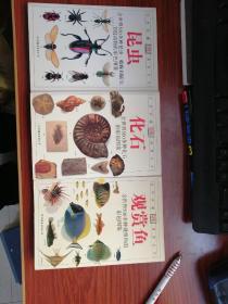 DK自然珍藏图鉴丛书 ; 昆虫  化石  观赏鱼  3本