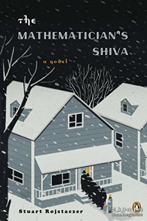 The Mathematician's Shiva:A Novel