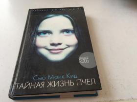 俄文原版2005年【内容如图】380页