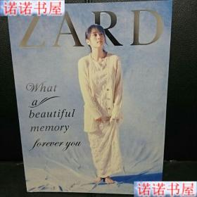 坂井泉水 ZARD What a beautiful memory forever you 书籍