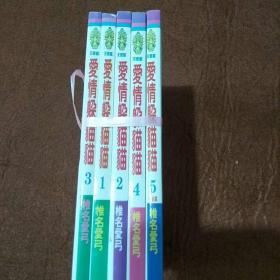 爱情躲猫猫 1-5册