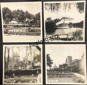 【系列照片】早期上海著名公园4张合售,含复兴公园、虹口公园、襄阳公园、黄埔公园。组照少见、品佳难得