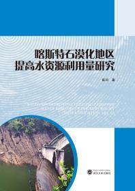 喀斯特石漠化地区提高水资源利用量研究   陈珂   武汉大学出版社