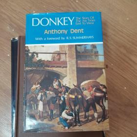 Donkey  The Story of the Ass From East to West     m