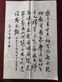 韶关老年书画研究会会员刘卓生书法,69cm*46cm。