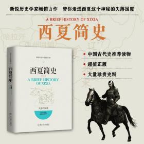 西夏简史 陈海波 著 帝国兴亡史部分中华上下五千年中国通史 中国历史全知道 古代史历史普及读物 西夏帝国历史传奇故事