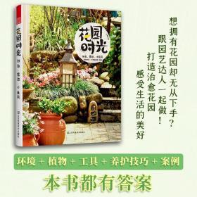 花园时光阳台露台小庭院(自己动手,享受庭院的打造乐趣)