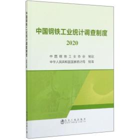 中国钢铁工业统计调查制度(2020)