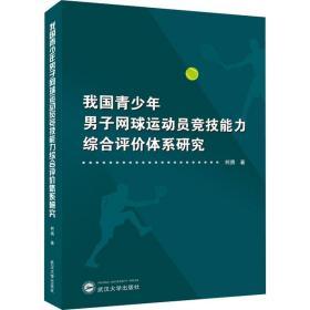 我国青少年男子网球运动员竞技能力综合评价体系研究
