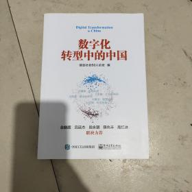 数字化转型中的中国