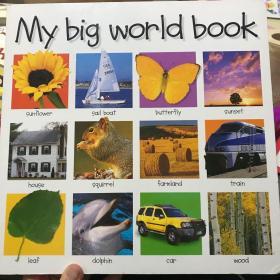 My big world book