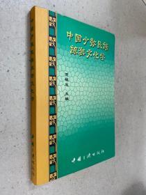 中国少数民族旅游文化学