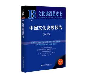 文化建设蓝皮书:中国文化发展报告(2020)