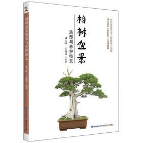 柏树盆景 造型与养护技艺