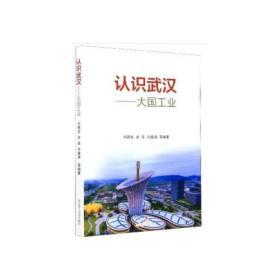 认识武汉:大国工业