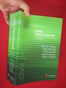 Civil procedure : commentary and materials (4th ed)     (16开  )   【详见图】