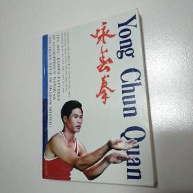 咏春拳:中英文版