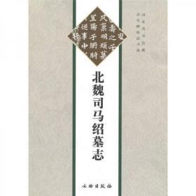 北魏司马绍墓志