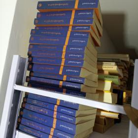 丹珠尔·五部大论及其注疏汇编 : 全23册 : 藏文(缺1至4册)