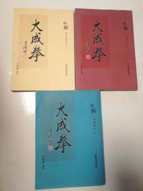 大成拳(于鸿坤)(全三卷)