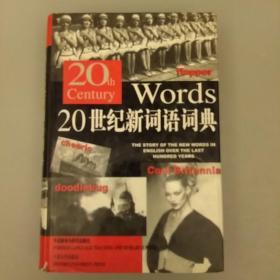 20世纪新词语词典   内页干净   品相如图    2021.1.1