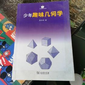 小企鹅趣味科学丛书:少年趣味几何学