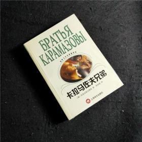 卡拉马佐夫兄弟   THE BROTHERS KARAMAZOV Dostoevsky 俄罗斯名著小说 文学 卡拉马佐夫兄弟/世界文学名著普及本 图书经典上海译文荣如德译本