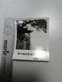 1983杭州西湖平湖秋月留影照片