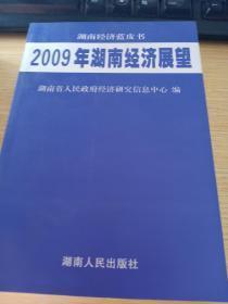 2009年湖南经济展望