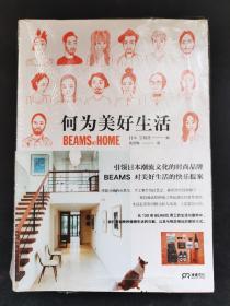何为美好生活 BEAMS AT HOME  正版实物图
