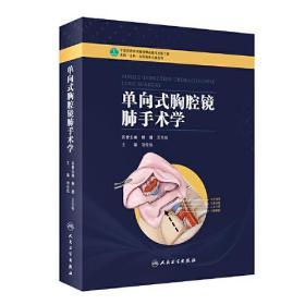 单项式胸腔镜肺手术学