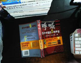 呼喊当今中国的5种声音