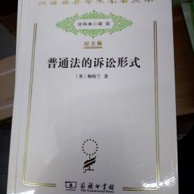 汉译世界学术名著丛书:普通法的诉讼形式(纪念版)