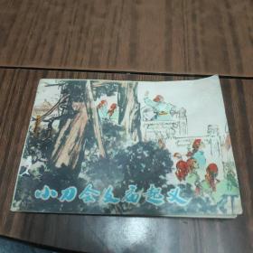 小刀会文庙起义(箱12)