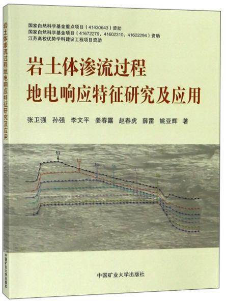 岩土体渗流过程地电响应特征研究及应用