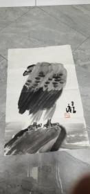 曾宓画稿(鹰)