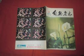 自然杂志(1980年 第4期) // 16开 【购满100元免运费】