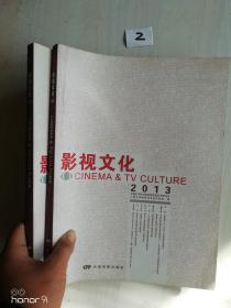 影视文化2013
