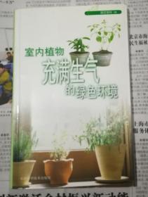 室内植物 充满生气的绿色环境