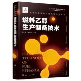 现代生物质能高效利用技术丛书//燃料乙醇生产制备技术