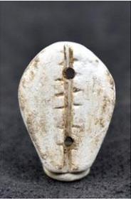 玉材质贝壳币,远古币,远古玉币,稀有,罕见,收藏珍品,极高收藏价值,孤品,珍品仅此一枚