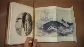 1837年 Graphic Illustrator of Nature & Art 《雕版插图图谱》珍贵初版本  80张木刻雕版版画 增补插图 手工牛皮精装
