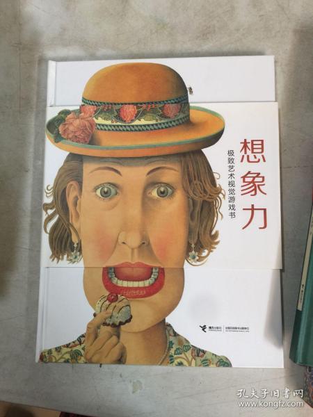 想象力:极致艺术视觉游戏书 [罗辑思维]