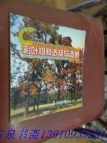 彩叶树种选择与造景