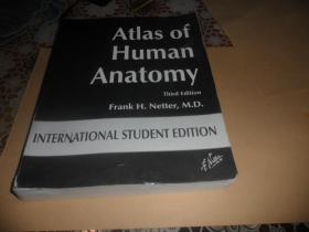 Atlas of Human Anatomy    (大16开 英文原版)third edition