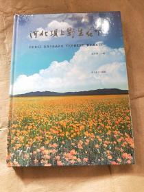 河北坝上野生花卉(精装)
