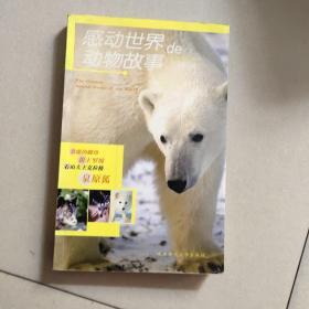 感动世界的动物故事