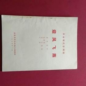 迎风飞燕(革命现代影调剧)
