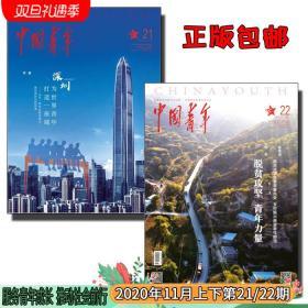 中国青年杂志2020年11月第21/22期 青春奋斗励志成长